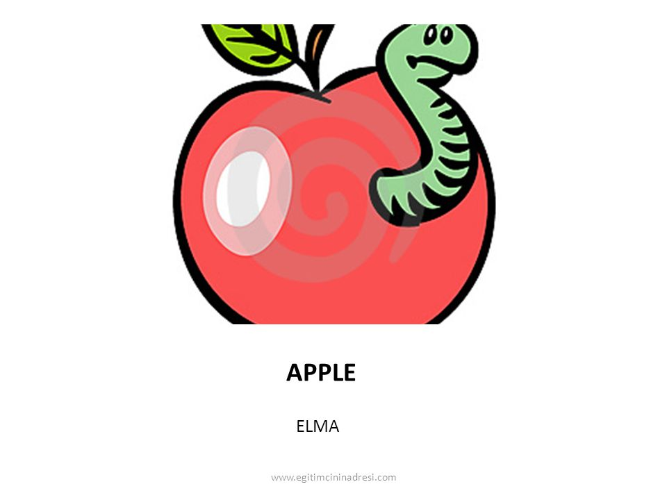 APPLE ELMA www.egitimcininadresi.com