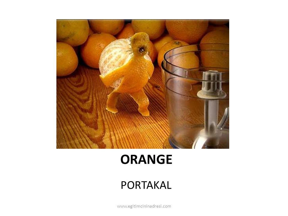 ORANGE PORTAKAL www.egitimcininadresi.com