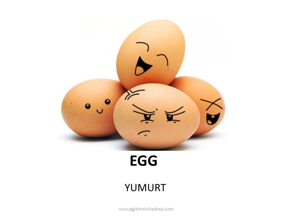 EGG YUMURT www.egitimcininadresi.com