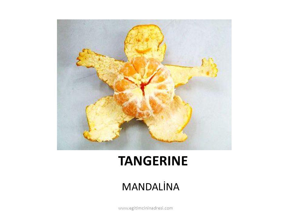 TANGERINE MANDALİNA www.egitimcininadresi.com