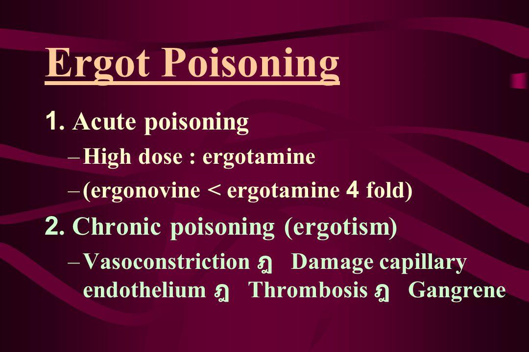Ergot Poisoning 1. Acute poisoning –High dose : ergotamine –(ergonovine < ergotamine 4 fold) 2. Chronic poisoning (ergotism) –Vasoconstriction ฎ Damag