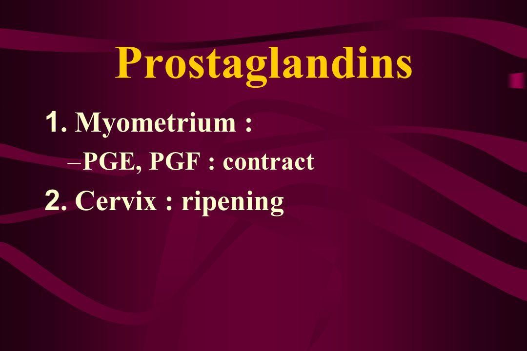 Prostaglandins 1. Myometrium : –PGE, PGF : contract 2. Cervix : ripening