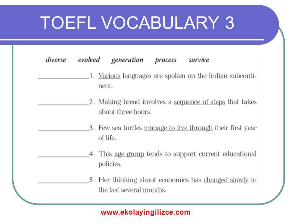 www.ekolayingilizce.com TOEFL VOCABULARY 3