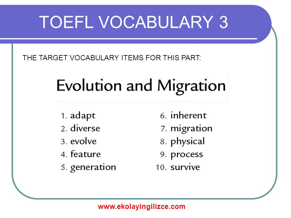 www.ekolayingilizce.com TOEFL VOCABULARY 3 THE TARGET VOCABULARY ITEMS FOR THIS PART: