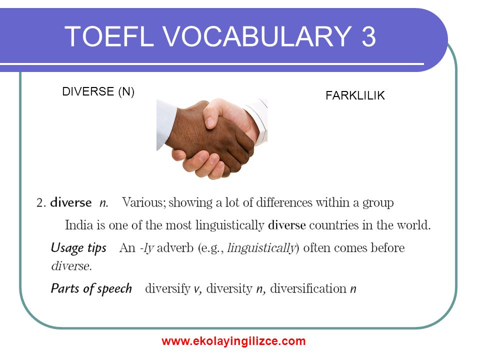 www.ekolayingilizce.com TOEFL VOCABULARY 3 DIVERSE (N) FARKLILIK