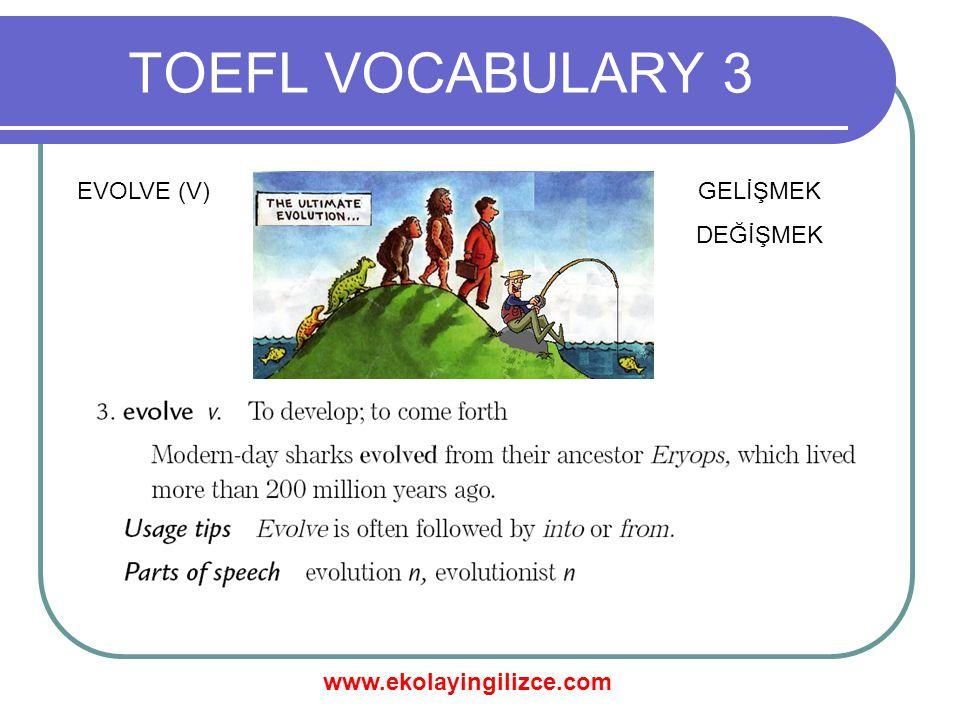 www.ekolayingilizce.com TOEFL VOCABULARY 3 EVOLVE (V)GELİŞMEK DEĞİŞMEK