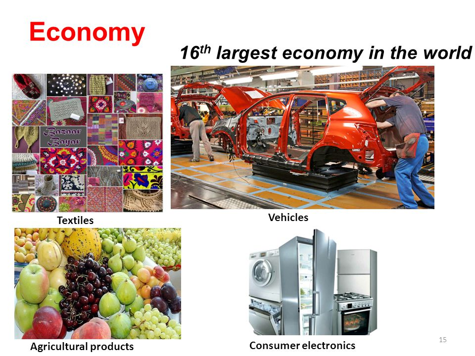 Economy Agricultural products Textiles Vehicles Consumer electronics 16 th largest economy in the world 15