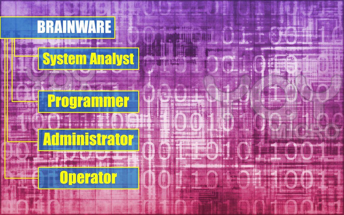 BRAINWARE System Analyst Programmer Administrator Operator