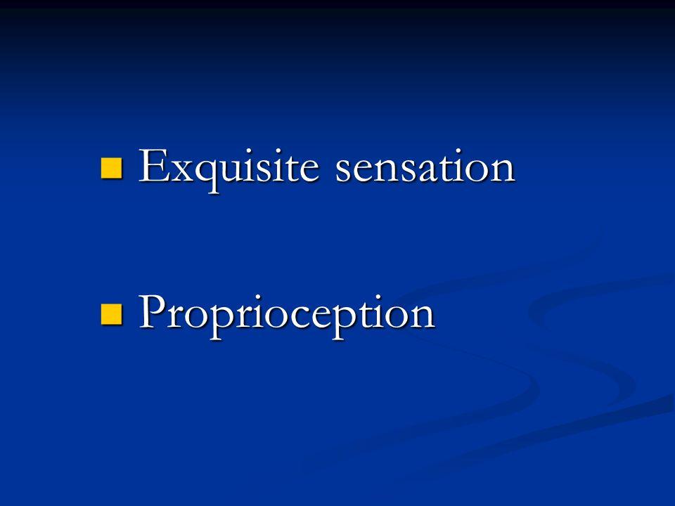 Exquisite sensation Exquisite sensation Proprioception Proprioception