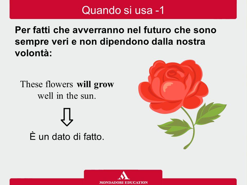 These flowers will grow well in the sun.⇩ È un dato di fatto.