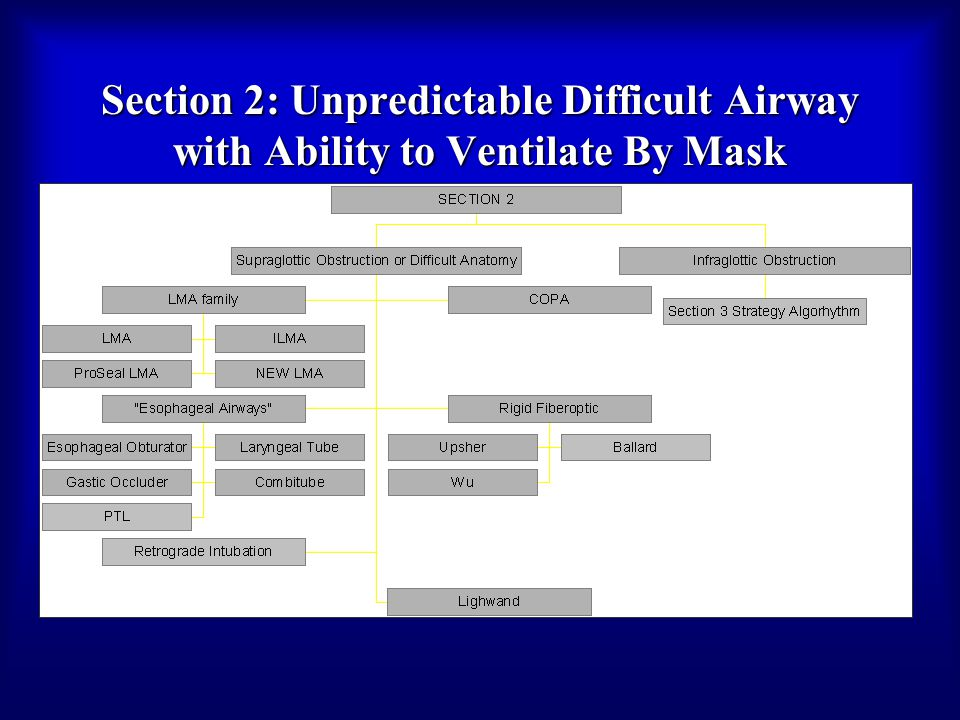 Section 2: Unpredictable Difficult Airway with Ability to Ventilate By Mask