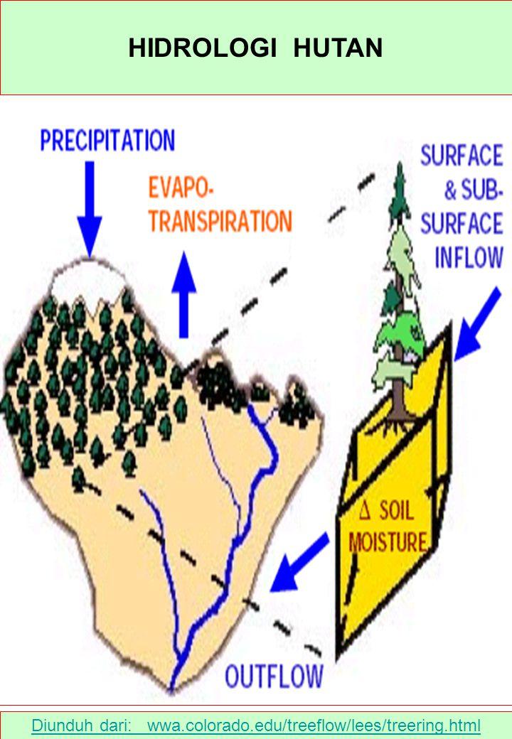 Diunduh dari : www.tanindo.com/abdi18/hal1101.htm Saat terjadinya hujan, air dapat masuk ke dalam tanah (infiltrasi) atau mengalir di permukaan tanah (limpasan permukaan / surface run-off).