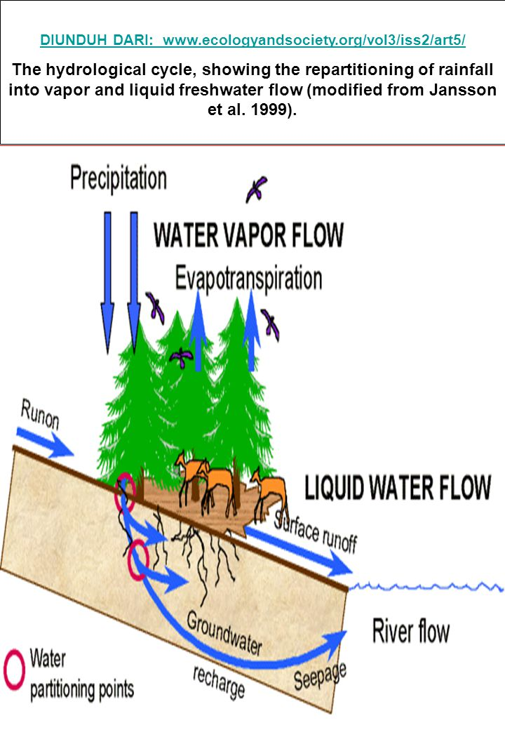 47 Water loss from the potentially rootable zone, is also limited by the maximum percolation rate of the subsoil, which is soil specific and should be provided by the user.