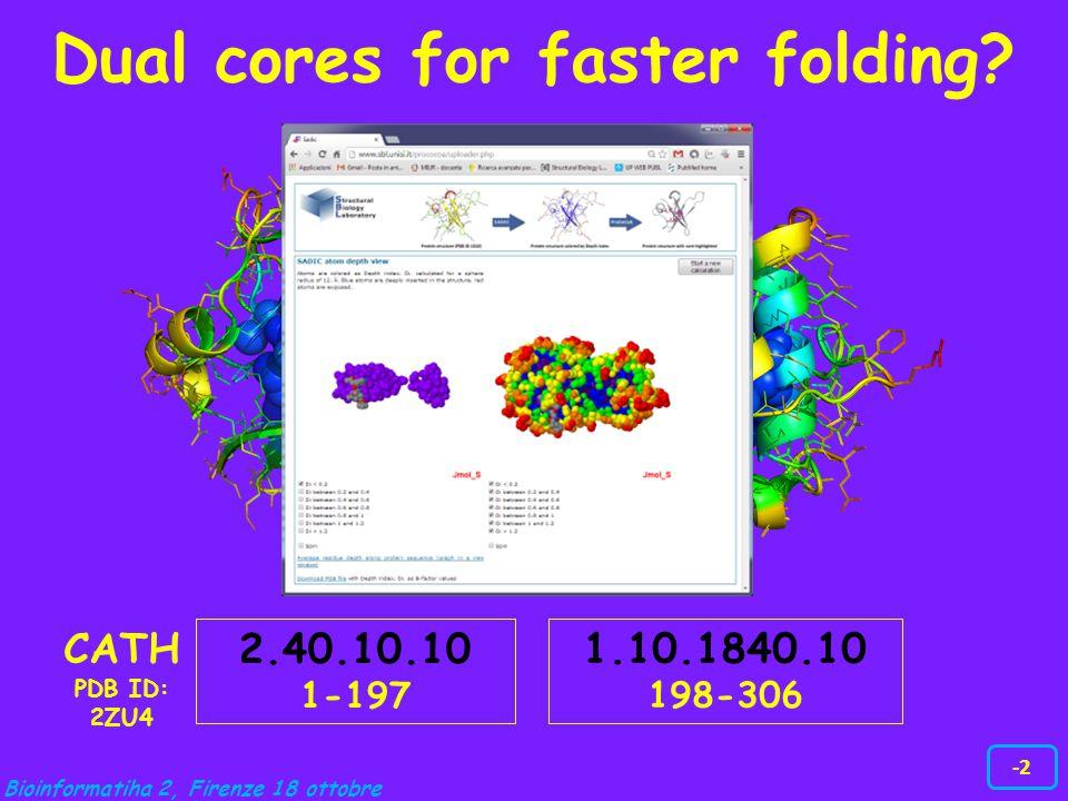 Bioinformatiha 2, Firenze 18 ottobre -2 1.10.1840.10 198-306 2.40.10.10 1-197 CATH PDB ID: 2ZU4 Dual cores for faster folding?