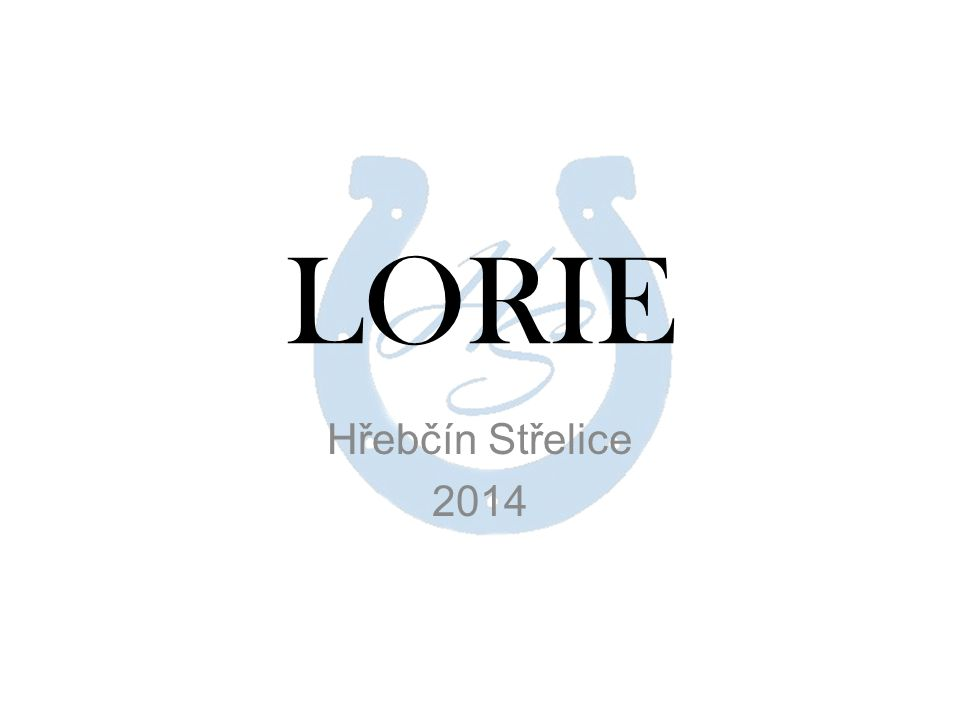 LORIE Hřebčín Střelice 2014