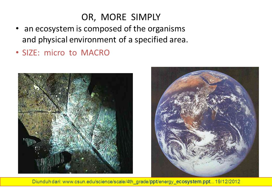 OR, MORE SIMPLY an ecosystem is composed of the organisms and physical environment of a specified area. SIZE: micro to MACRO Diunduh dari: www.csun.ed