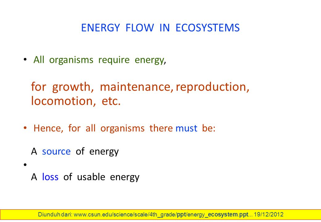 ENERGY FLOW IN ECOSYSTEMS All organisms require energy, for growth, maintenance, reproduction, locomotion, etc. Hence, for all organisms there must be