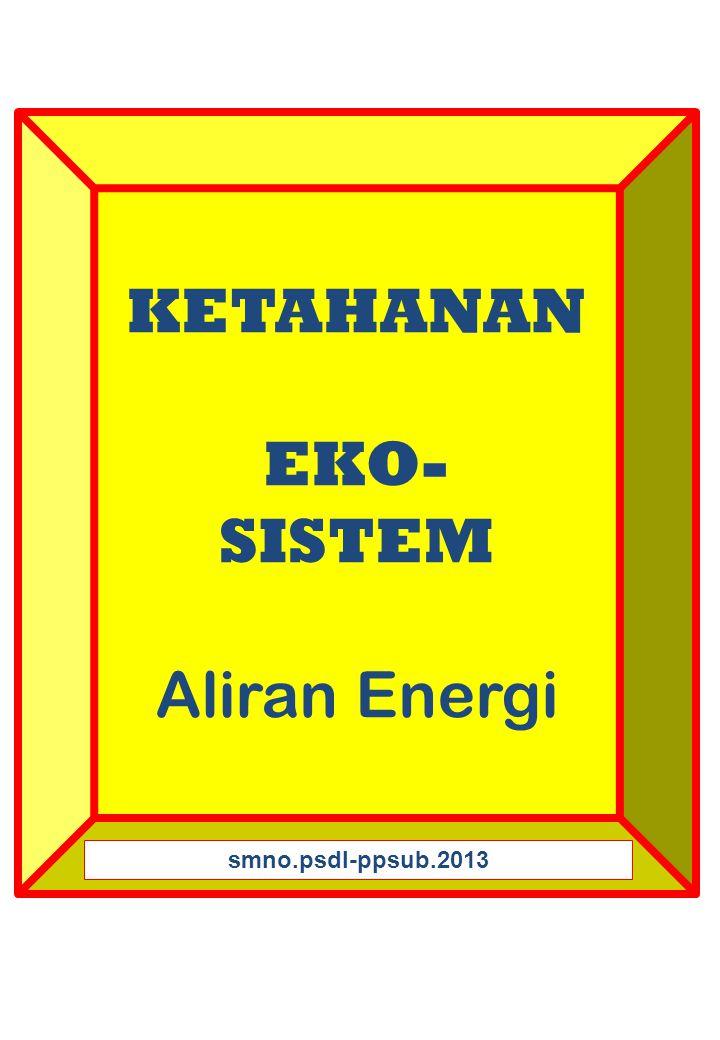 KETAHANAN EKO- SISTEM Aliran Energi smno.psdl-ppsub.2013