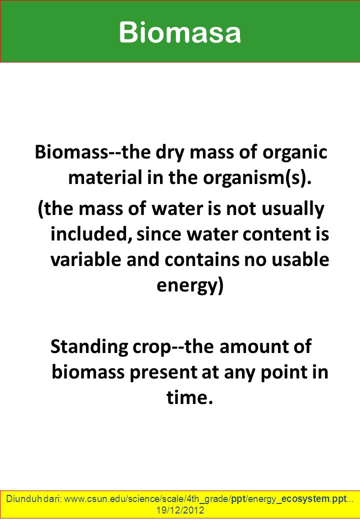 Biomass--the dry mass of organic material in the organism(s).