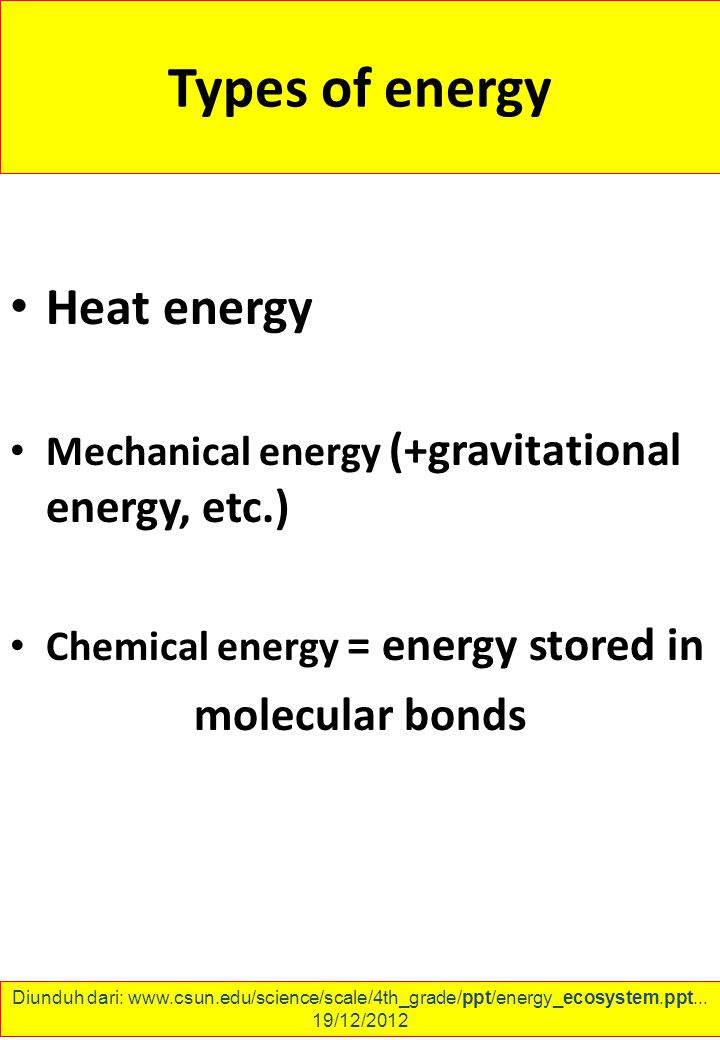 Types of energy Heat energy Mechanical energy (+gravitational energy, etc.) Chemical energy = energy stored in molecular bonds Diunduh dari: www.csun.edu/science/scale/4th_grade/ppt/energy_ecosystem.ppt...