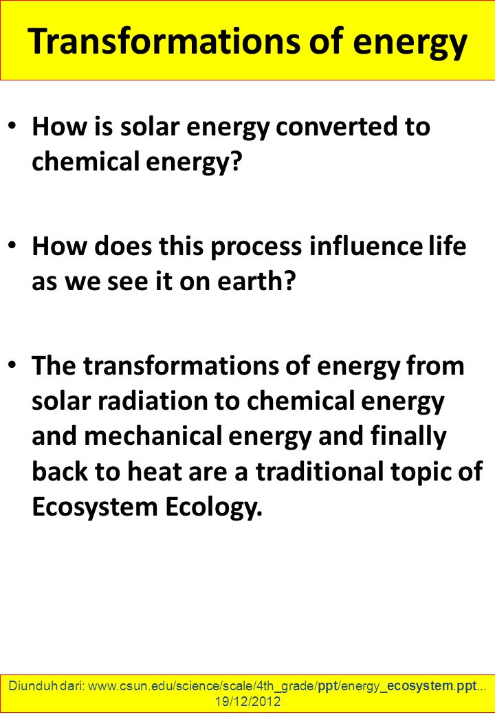 Transformations of energy How is solar energy converted to chemical energy.
