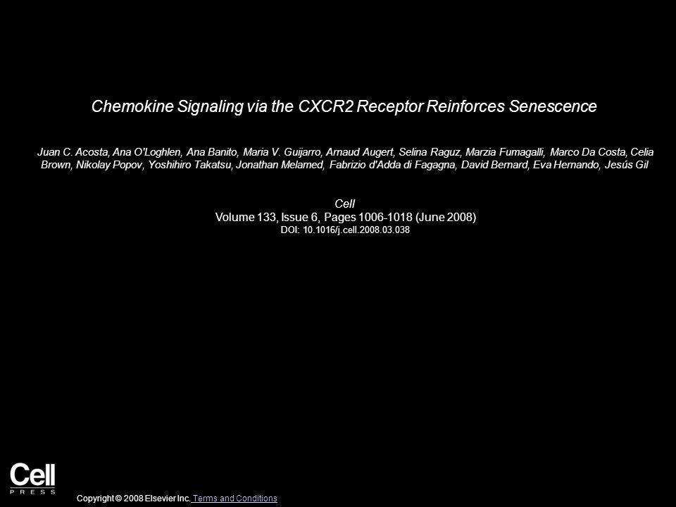 Chemokine Signaling via the CXCR2 Receptor Reinforces Senescence Juan C.