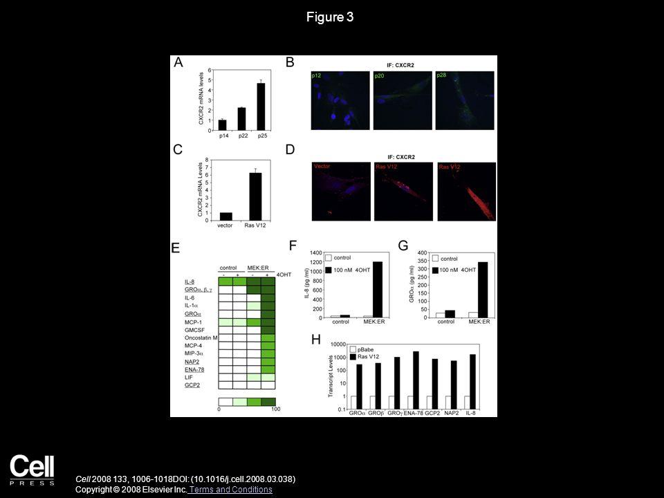 Figure 3 Cell 2008 133, 1006-1018DOI: (10.1016/j.cell.2008.03.038) Copyright © 2008 Elsevier Inc.
