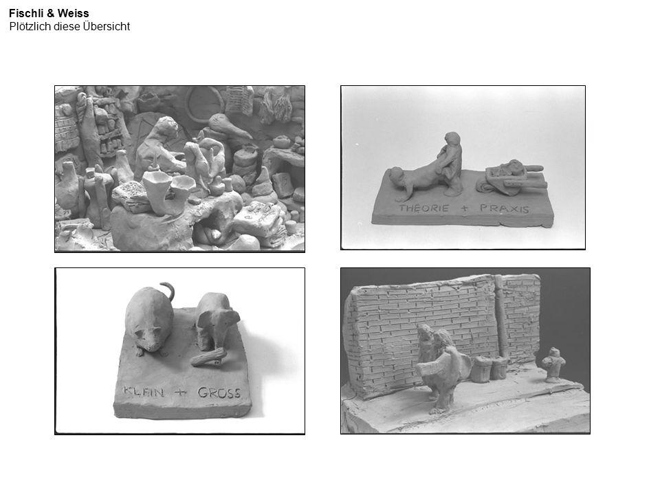 http://www.tate.org.uk/modern/exhibitions/fischliandweiss/rooms/room11.shtm Fischli & Weiss Ordnung und Reinlichkeit (2003-2009)