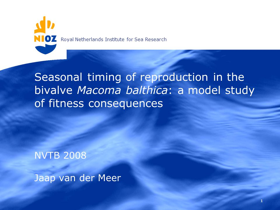 Royal Netherlands Institute for Sea Research 1 Seasonal timing of reproduction in the bivalve Macoma balthica: a model study of fitness consequences NVTB 2008 Jaap van der Meer