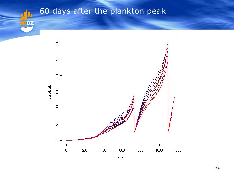 14 60 days after the plankton peak