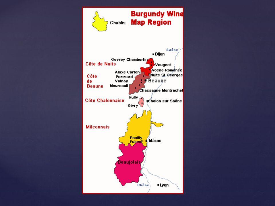 Name of Wine Met Standards Producing Info Shipper Name Mis en bouteille par … Mis en bouteille au château (à la propriété) …
