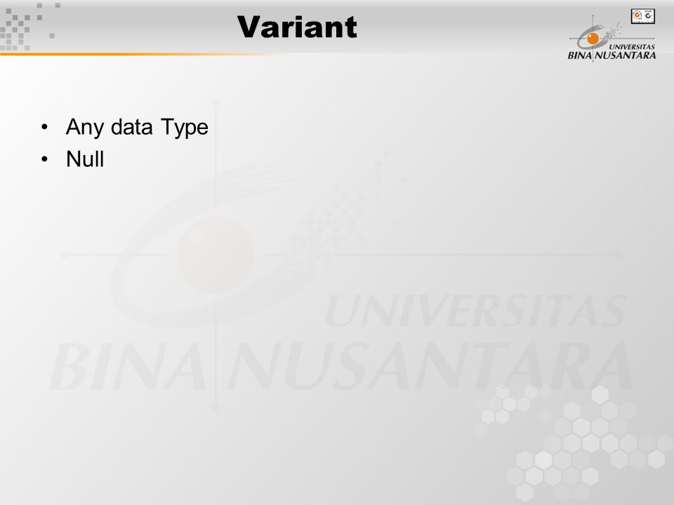 Variant Any data Type Null