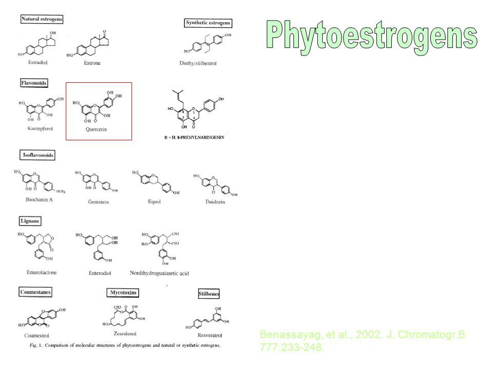 Attivazione di p53 in un linfoblastoma (S= citoplasma; P= nucleo)