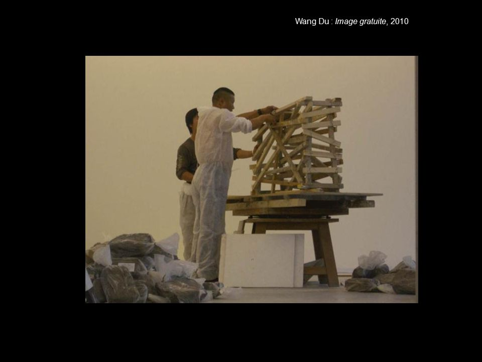 Wang Du : Image gratuite, 2010