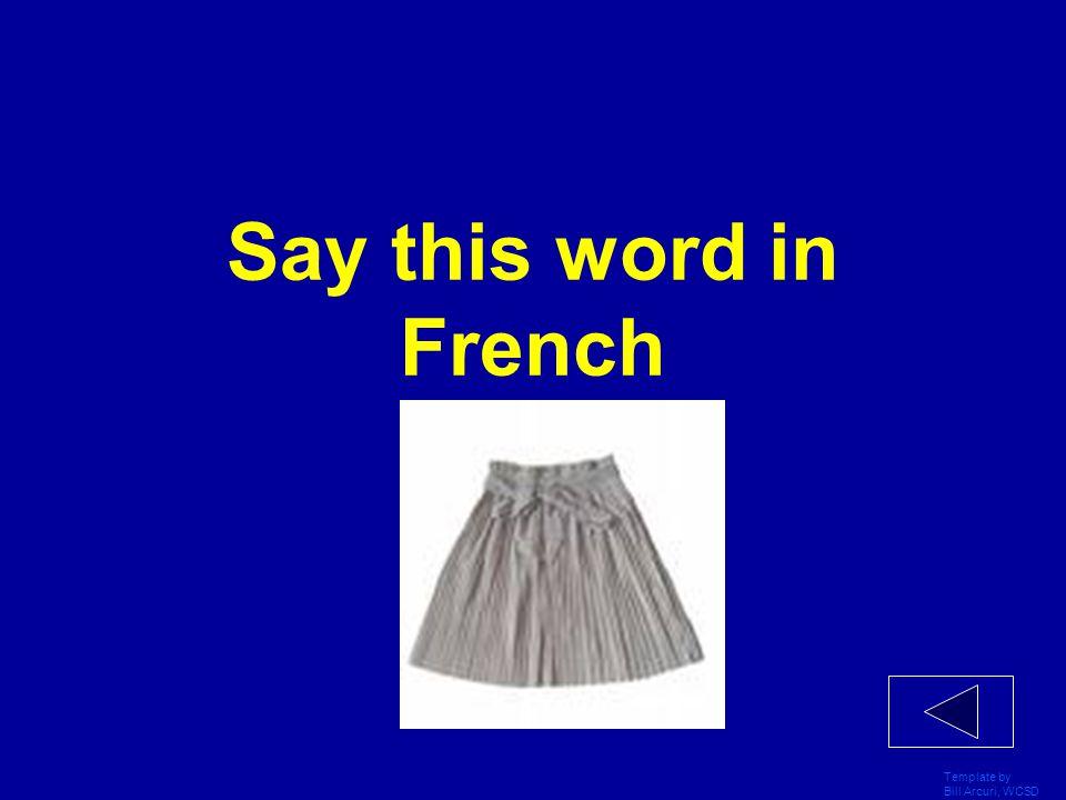Template by Bill Arcuri, WCSD Je porte des chaussettes parce'qu'___ sont pratique.