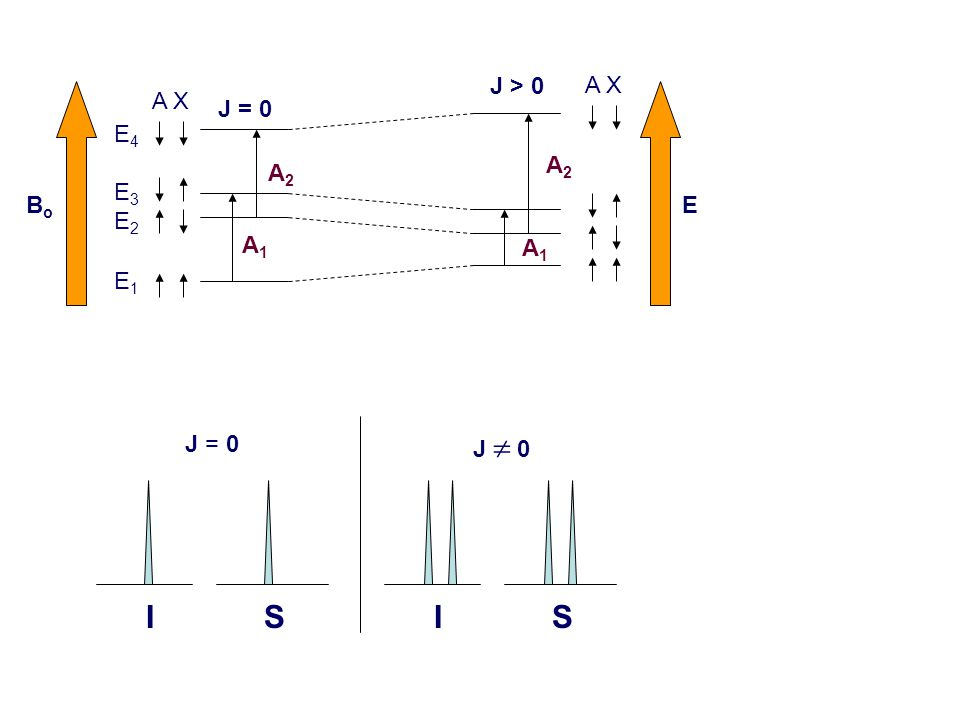 I S J  0 I S J = 0 A X A1A1 A2A2 A1A1 A2A2 BoBo E J = 0 J > 0 E4E3E2E1E4E3E2E1