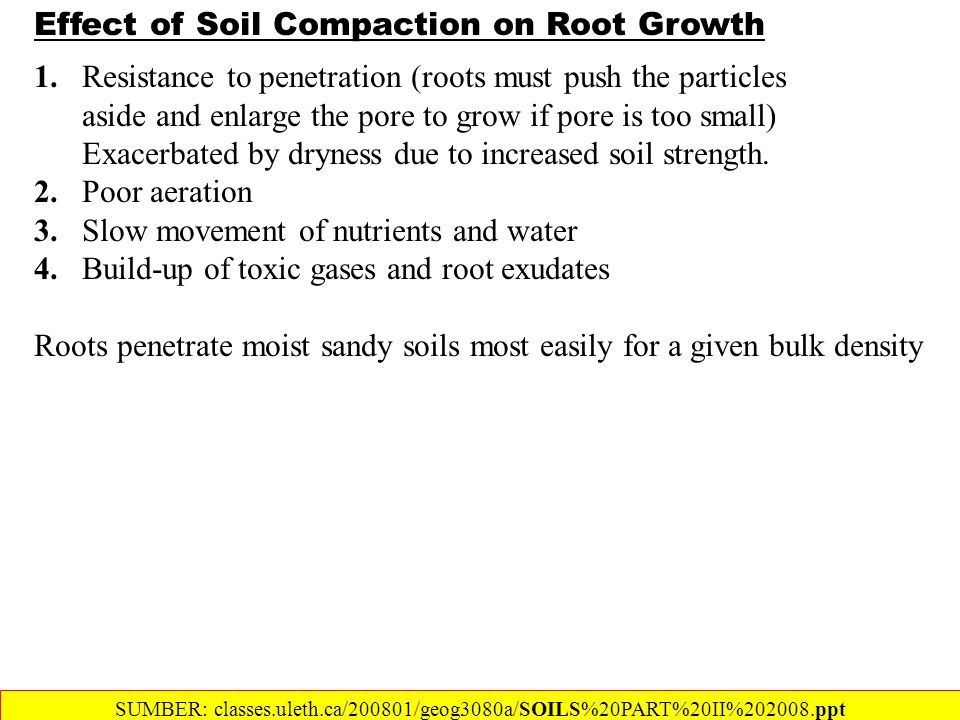 Effect of Soil Compaction on Root Growth 1.Resistance to penetration (roots must push the particles aside and enlarge the pore to grow if pore is too small) Exacerbated by dryness due to increased soil strength.