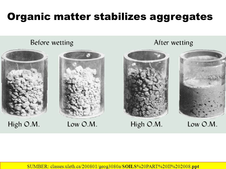 Organic matter stabilizes aggregates SUMBER: classes.uleth.ca/200801/geog3080a/SOILS%20PART%20II%202008.ppt