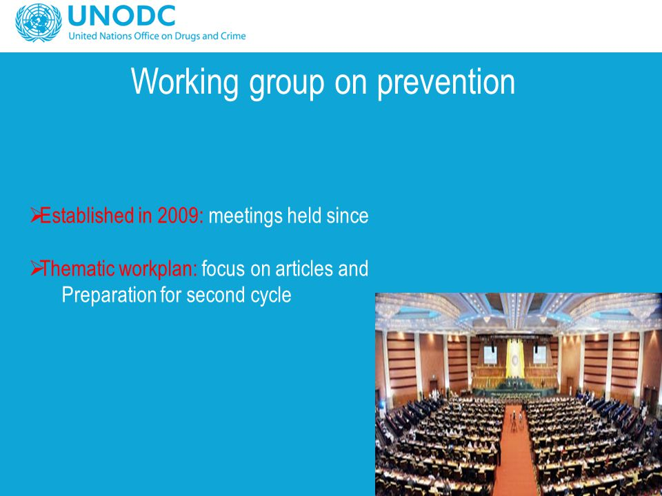 Working group on prevention  Established in 2009: meetings held since  Thematic workplan: focus on articles and Preparation for second cycle