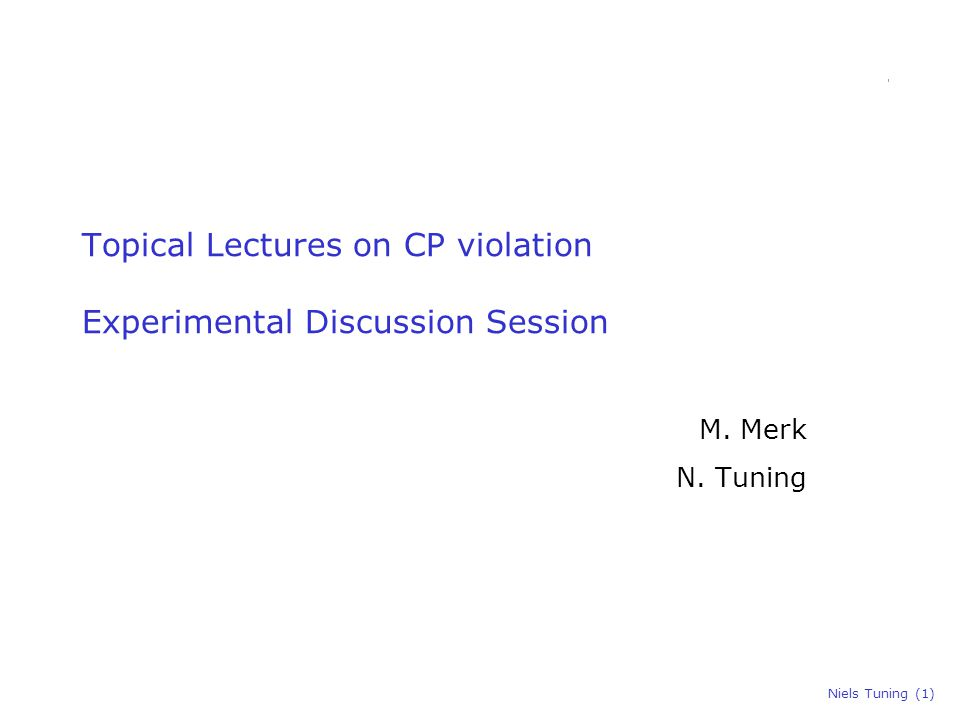 Niels Tuning (1) Topical Lectures on CP violation Experimental Discussion Session M. Merk N. Tuning