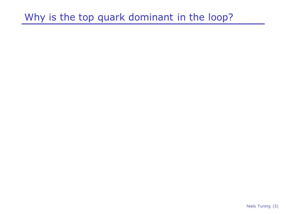 Why is the top quark dominant in the loop? Niels Tuning (6)