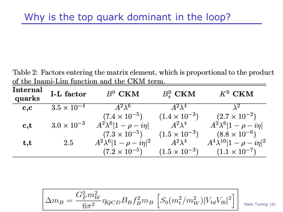 Why is the top quark dominant in the loop Niels Tuning (6)