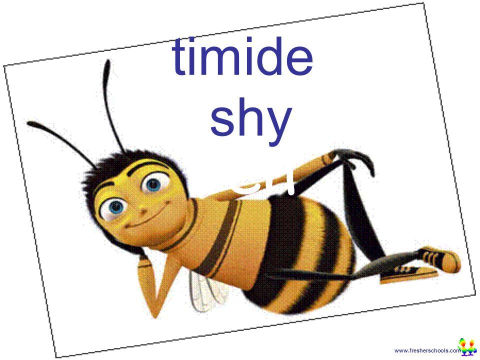 www.fresherschools.com Ben timide shy