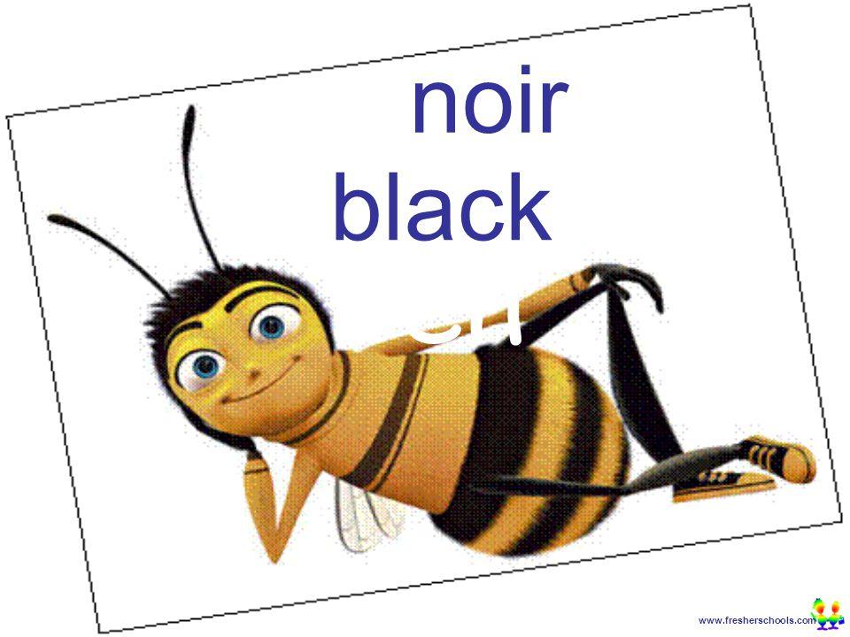 www.fresherschools.com Ben noir black