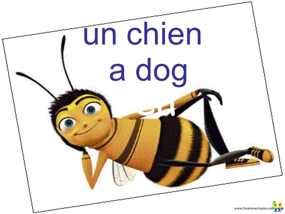 www.fresherschools.com Ben un chien a dog