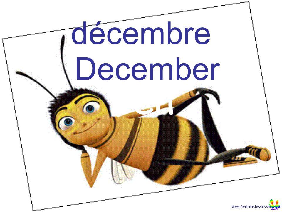 www.fresherschools.com Ben décembre December