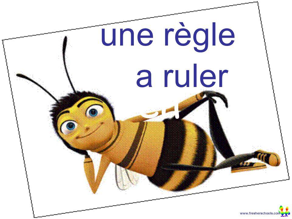 www.fresherschools.com Ben une règle a ruler