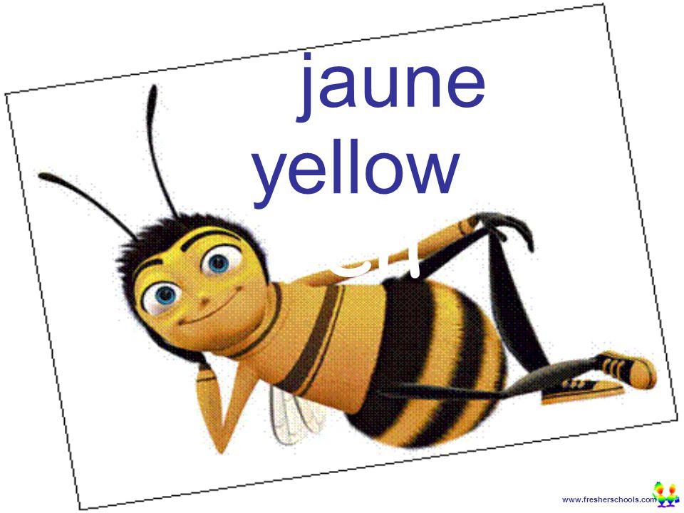 www.fresherschools.com Ben jaune yellow