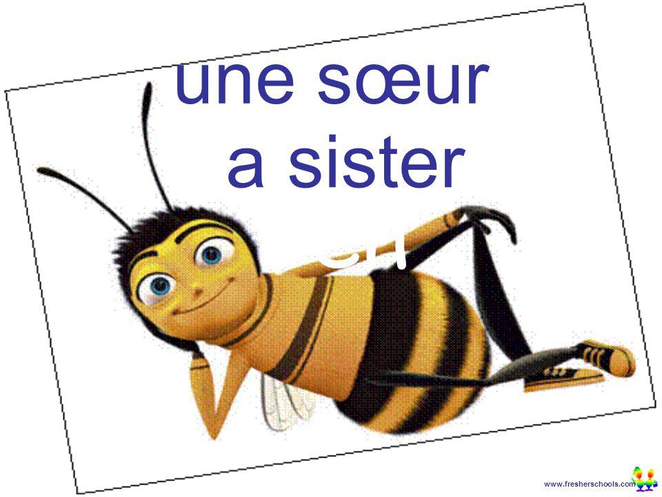 www.fresherschools.com Ben une sœur a sister