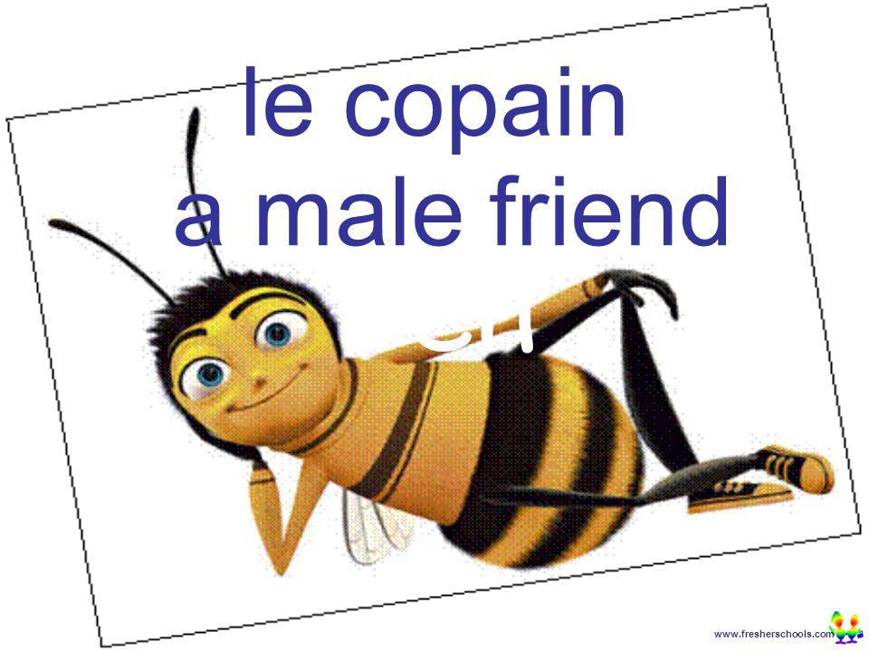 www.fresherschools.com Ben le copain a male friend